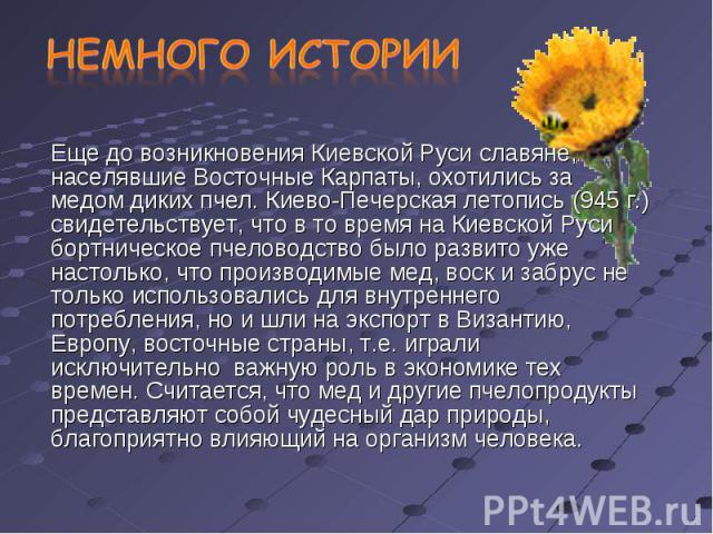 Еще до возникновения Киевской Руси славяне, населявшие Восточные Карпаты, охотились за медом диких пчел. Киево-Печерская летопись (945 г.) свидетельствует, что в то время на Киевской Руси бортническое пчеловодство было развито уже настолько, что про…