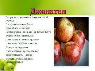 Джонатан Скорость созревания - ранне-осенний периодПлодоношения-до 5 летВкус ябл