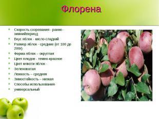 Флорена Скорость созревания - ранне-зимнийпериод Вкус яблок - кисло-сладкийРазме