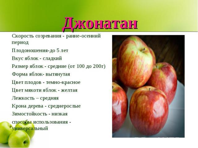 Джонатан Скорость созревания - ранне-осенний периодПлодоношения-до 5 летВкус яблок - сладкийРазмер яблок - средние (от 100 до 200г)Форма яблок- вытянутаяЦвет плодов - темно-красноеЦвет мякоти яблок - желтаяЛежкость – средняяКрона дерева - среднеросл…