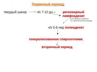 Первичный период: Первичный период: твердый шанкр ч/з 7-10 дн – регионарный лимф