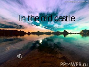 In the old castle