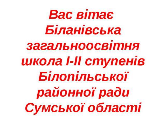 Вас вітає Біланівська загальноосвітня школа І-ІІ ступенів Білопільської районної ради Сумської області