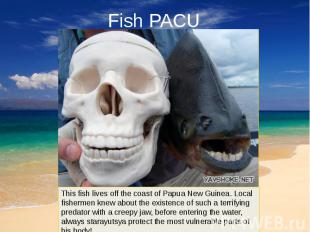 Fish PACU