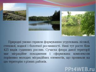 Природні умови сприяли формуванню угруповань лісової, степової, водної і болотно