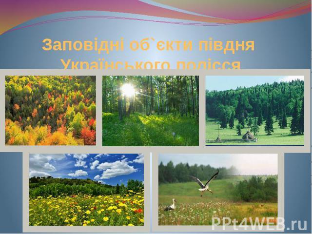 Заповідні об`єкти півдня Українського полісся