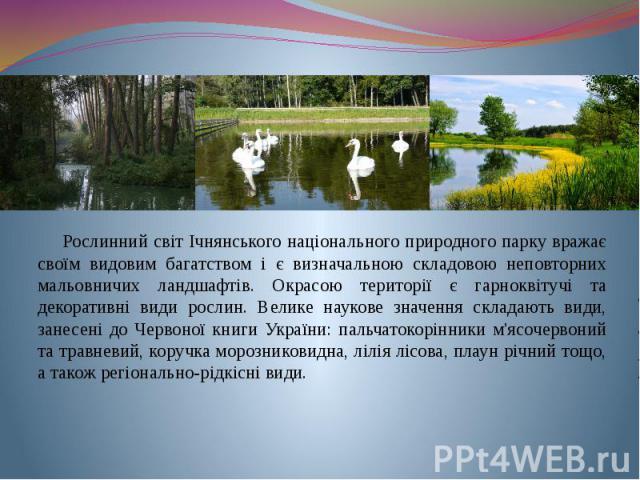 Рослинний світ Ічнянського національного природного парку вражає своїм видовим багатством і є визначальною складовою неповторних мальовничих ландшафтів. Окрасою території є гарноквітучі та декоративні види рослин. Велике наукове значення складають в…