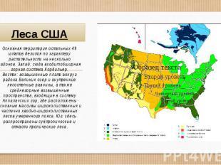 Леса США Основная территория остальных 49 штатов делится по характеру растительн