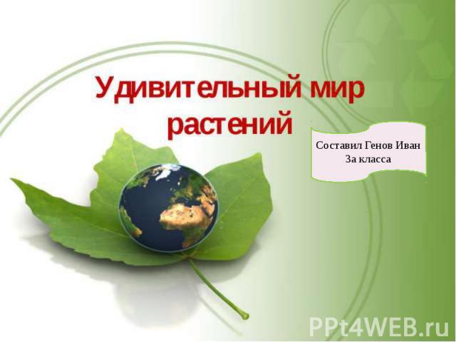 Экзотические растения Генов Иван 3А класс