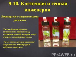 9-10. Клеточная и генная инженерия