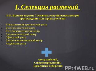 I. Селекция растений Н.И. Вавилов выделил 7 основных географических центров прои
