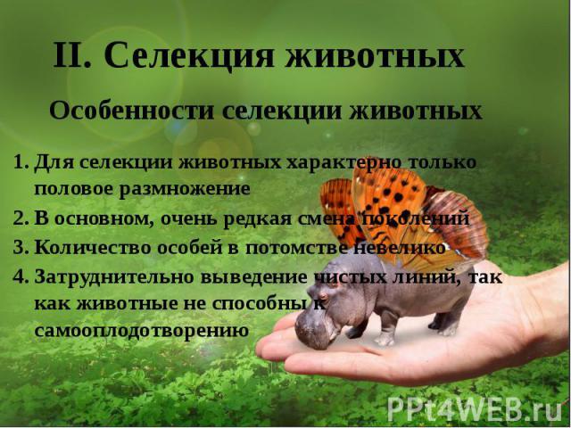 II. Селекция животных
