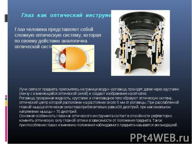 Лучи света от предмета, преломляясь на границе воздух–роговица, проходят далее через хрусталик (линзу с изменяющейся оптической силой) и создают изображение на сетчатке.Роговица, прозрачная жидкость, хрусталик и стекловидное тело образуют оптическую…