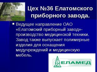 Цех №36 Елатомского приборного завода. Ведущее направление ОАО «Елатомский прибо