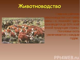 Главным районом животноводства стал север страны – о. Хоккайдо; здесь производит
