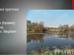 Основні притоки Собок (права); Сорока, Кіблич, Вербич (ліві).