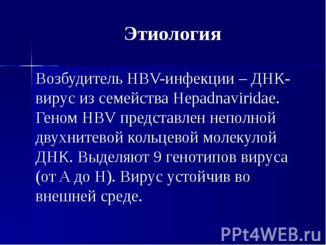 Этиология Возбудитель HBV-инфекции – ДНК-вирус из семейства Hepadnaviridae. Геном HBV представлен неполной двухнитевой кольцевой молекулой ДНК. Выделяют 9 генотипов вируса (от A до H). Вирус устойчив во внешней среде.