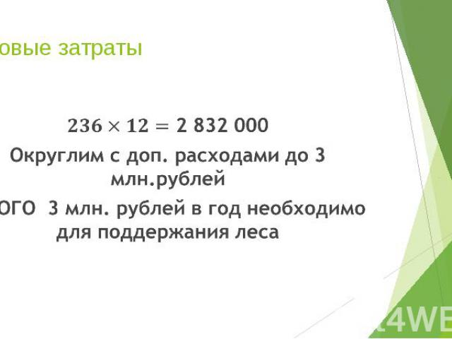 Годовые затраты 2 832 000 Округлим с доп. расходами до 3 млн.рублей ИТОГО 3 млн. рублей в год необходимо для поддержания леса