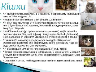 * У кішок в посліді, зазвичай, 1-8 кошенят. В середньому кішка здатна давати 2-3