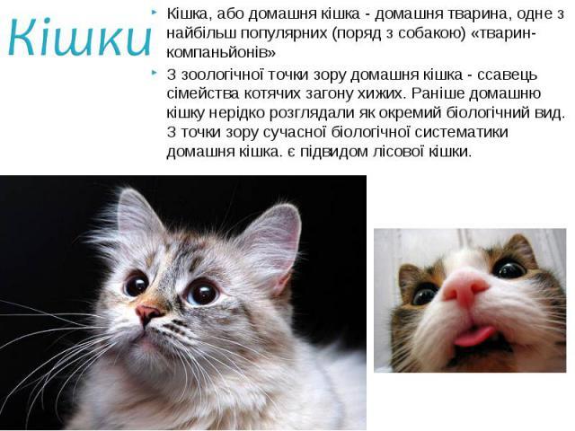 Кішка, або домашня кішка - домашня тварина, одне з найбільш популярних (поряд з собакою) «тварин-компаньйонів» Кішка, або домашня кішка - домашня тварина, одне з найбільш популярних (поряд з собакою) «тварин-компаньйонів» З зоологічної точки зору до…