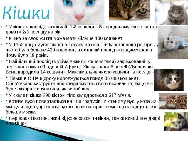 * У кішок в посліді, зазвичай, 1-8 кошенят. В середньому кішка здатна давати 2-3 посліду на рік. * У кішок в посліді, зазвичай, 1-8 кошенят. В середньому кішка здатна давати 2-3 посліду на рік. * Кішка за своє життя може мати більше 100 кошенят. * У…