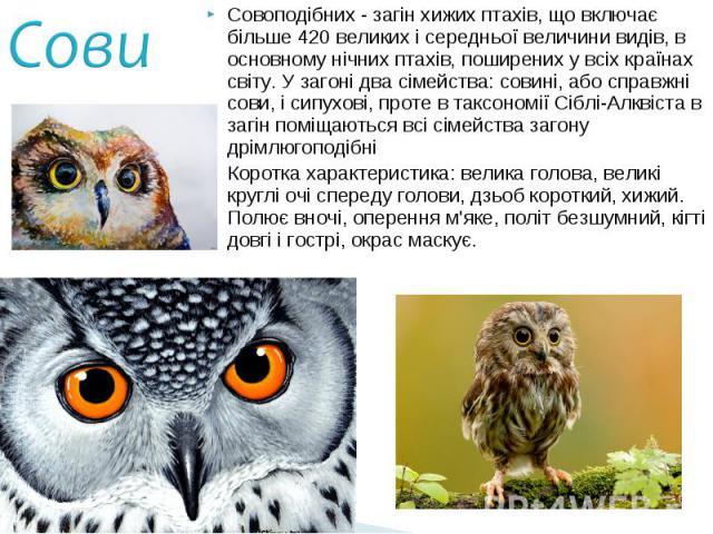 Совоподібних - загін хижих птахів, що включає більше 420 великих і середньої величини видів, в основному нічних птахів, поширених у всіх країнах світу. У загоні два сімейства: совині, або справжні сови, і сипухові, проте в таксономії Сіблі-Алквіста …