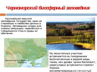 Черноморский биосферный заповедник  Крупнейший морской заповедник государс