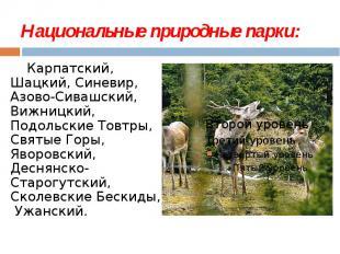Национальные природные парки: Карпатский, Шацкий, Синевир, Азово-Сивашский