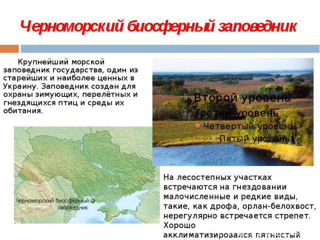 Черноморский биосферный заповедник  Крупнейший морской заповедник государства, один из старейших и наиболее ценных в Украину. Заповедник создан для охраны зимующих, перелётных и гнездящихся птици среды их обитания.