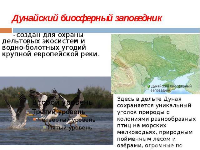 Дунайский биосферный заповедник - создан для охраны дельтовых экосистем и водно-болотных угодий крупной европейской реки.