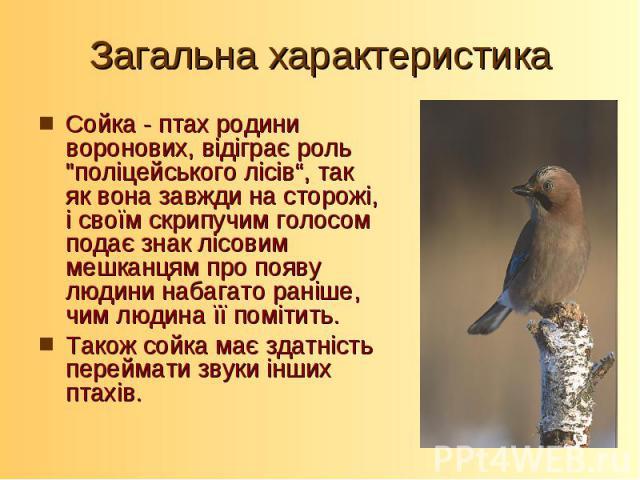 Загальна характеристикаСойка - птах родини воронових, відіграє роль
