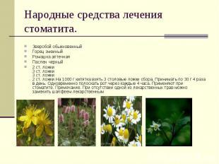 Зверобой обыкновенный Горец змеиный Ромашка аптечная Паслен черный2 ст. ложки3 с