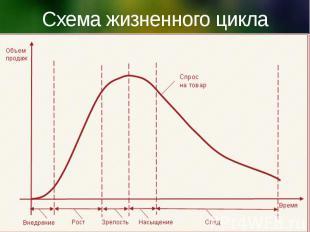 Схема жизненного цикла товара