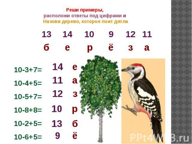 Реши примеры, расположи ответы под цифрами и Назови дерево, которое поит дятла10-3+7=10-4+5=10-5+7=10-8+8=10-2+5=10-6+5=