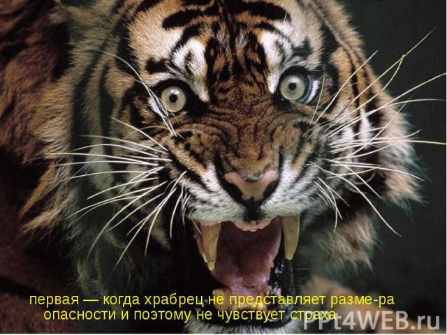 первая — когда храбрец не представляет разме-ра опасности и поэтому не чувствует страха первая — когда храбрец не представляет разме-ра опасности и поэтому не чувствует страха