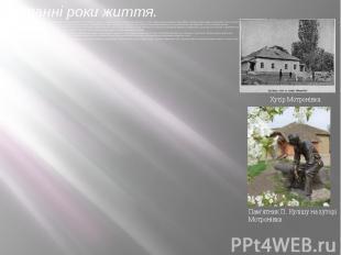 Останні роки життя.П. Куліш оселяється на хуторі Мотронівка поблизу Борзни Черні