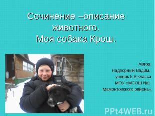 Сочинение –описание животного.Моя собака Крош. Автор: Надворный Вадим, ученик 5