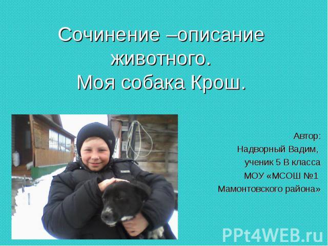 Сочинение –описание животного.Моя собака Крош. Автор: Надворный Вадим, ученик 5 В класса МОУ «МСОШ №1 Мамонтовского района»