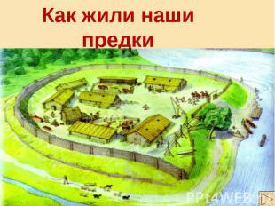Как жили наши предки