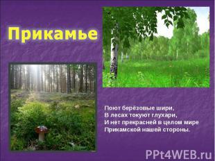 Поют берёзовые шири, В лесах токуют глухари, И нет прекрасней в целом мире Прика