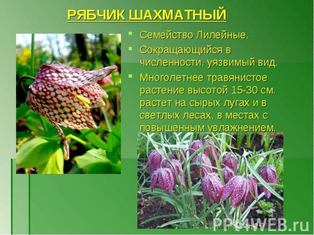 Семейство Лилейные. Семейство Лилейные. Сокращающийся в численности, уязвимый вид. Многолетнее травянистое растение высотой 15-30 см. растет на сырых лугах и в светлых лесах, в местах с повышенным увлажнением.