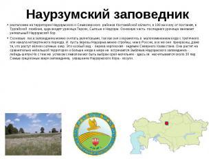 Наурзумский заповедник расположен на территории Наурзумского и Семиозерского&nbs