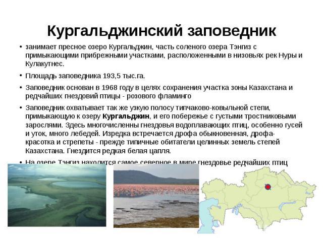 Кургальджинский заповедник занимает пресное озеро Кургальджин, часть соленого озера Тэнгиз с примыкающими прибрежными участками, расположенными в низовьях рек Нуры и Кулакутнес. Площадь заповедника 193,5 тыс.га. Заповедник основан в 1968 году в целя…