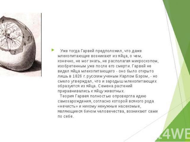 Уже тогда Гарвей предположил, что даже млекопитающие возникают из яйца, о чем, конечно, не мог знать, не располагая микроскопом, изобретенным уже после его смерти. Гарвей не видел яйца млекопитающего - оно было открыто лишь в 1826 г. русским …