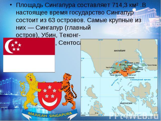 Площадь Сингапура составляет 714,3км².В настоящее время государство Сингапур состоит из 63 островов. Самые крупные из них— Сингапур(главный остров),Убин,Теконг-Бесар,Брани,Сентоса,Семакауи Судонг