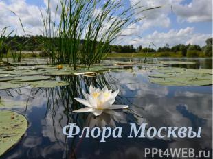 Флора Москвы