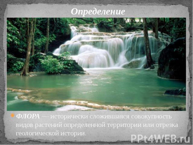 Определение ФЛОРА— исторически сложившаяся совокупность видов растений определенной территории или отрезка геологической истории.
