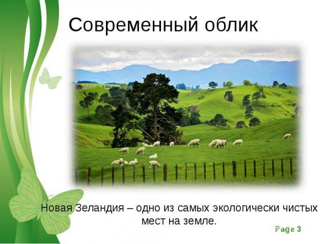 Новая Зеландия – одно из самых экологически чистых мест на земле. Новая Зеландия – одно из самых экологически чистых мест на земле.