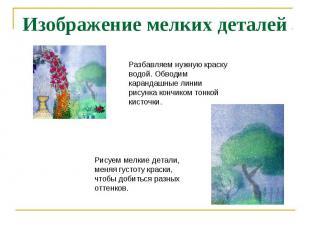 Изображение мелких деталей Разбавляем нужную краску водой. Обводим карандашные л
