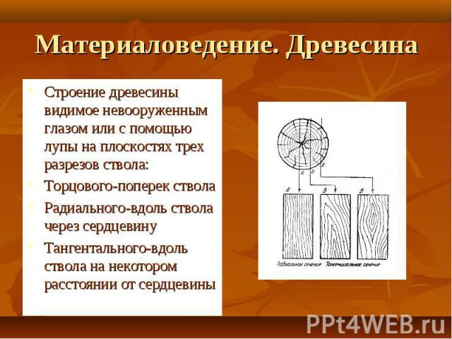 Материаловедение. Древесина Строение древесины видимое невооруженным глазом или с помощью лупы на плоскостях трех разрезов ствола:Торцового-поперек стволаРадиального-вдоль ствола через сердцевинуТангентального-вдоль ствола на некотором расстоянии от…